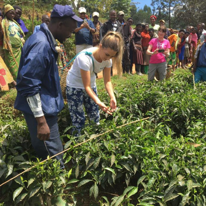 What does buying Fairtrade Tea mean?