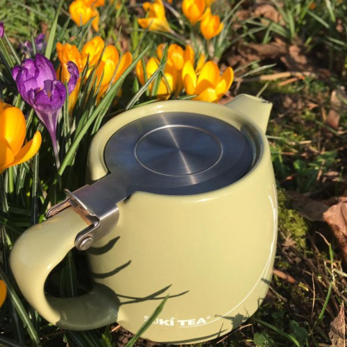 Spring into Summer!