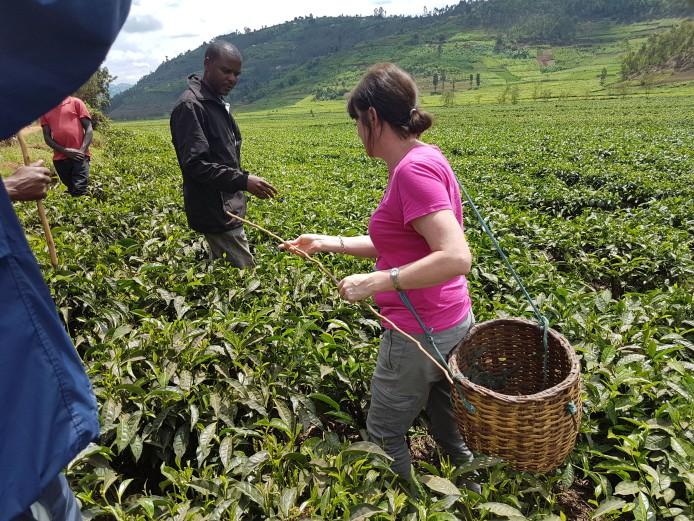 Rwanda microlot blog img