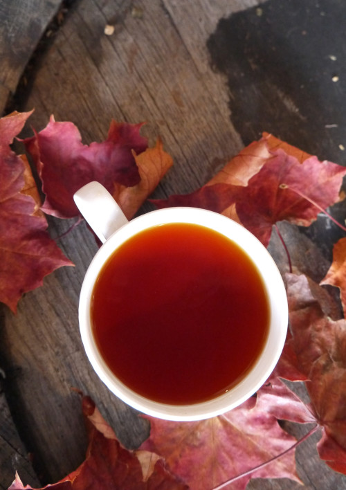 Suki Rooibos Autumn Tea