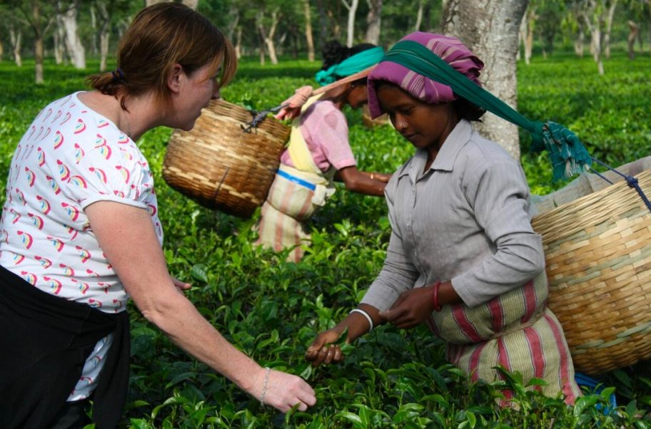 SUKI tea Sourcing
